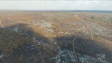 INPE registra mais de 18 mil focos de incêndio no Maranhão - Município de Grajaú continua ocupando o primeiro lugar no ranking do fogo.