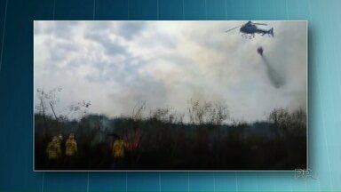 Incêndio no Parque Ilha Grande já dura uma semana - Quinze mil hectares já foram queimados, o que equivale a 20% da área do parque.