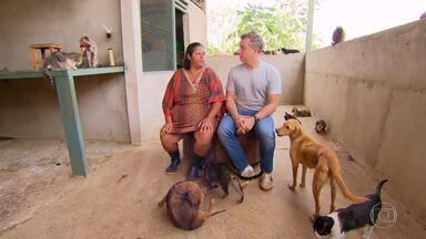 Conheça a história de amor de Orcileni com os animais - A moradora do Distrito Federal começou a resgatar animais com oito anos e estima já ter cuidado de cerca de 5 mil animais