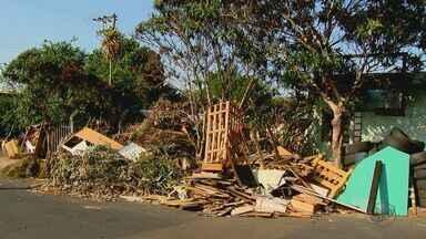 Sujeira em ecoponto gera reclamação de moradores em São Carlos - Por causa do entulho, eles sofrem com aparições de insetos dentro das casas próximas ao local.