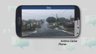 Morador em Manaus pede providência para asfalto precário e lixo em rua - Problema foi relatado por meio do Tô na Rede