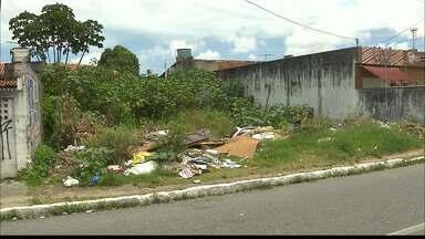 Lixo em terrenos: saiba como acionar a Prefeitura de João Pessoa - Lixo em terrenos podem causar proliferação de doenças.