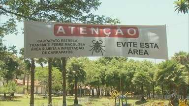 Parque é interditado por risco de febre maculosa em Rio das Pedras - Criança atendida em uma unidade de saúde do município estava com o carrapato
