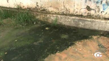 Moradores do Trapiche reclamam de esgoto em rua do bairro - Mau cheiro toma conta da rua.
