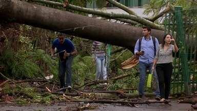 Temporal deixa muita destruição em áreas do DF - Muitas casas foram destelhadas e muros desabaram. A equipe do DFTV acompanhou a força-tarefa que consertou os estragos.