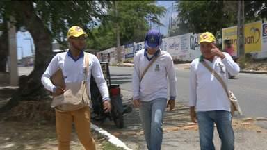Bairros de Campina Grande estão com alto índice de infestação do mosquito da dengue - Dados preocupam autoridades