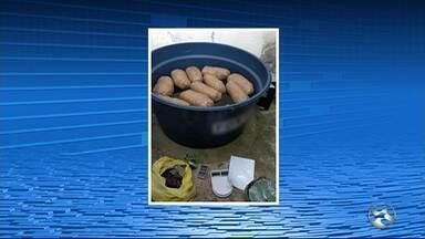 Polícia apreende 20 kg de maconha escondidos dentro de caixa d'água em Caruaru - No local também foi encontrado um revólver.