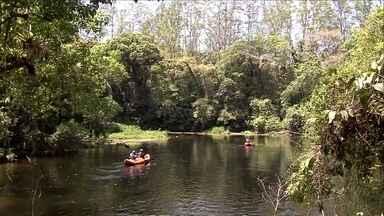 Parque das Neblinas é um exemplo da natureza recuperada - O Parque das Neblinas é uma bela reserva de Mata Altântica que fica entre Mogi das Cruzes e Bertioga.