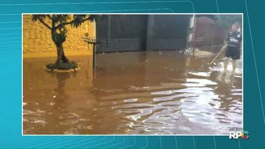 Chuva rápida causa estragos e confusão no trânsito de Londrina - Várias ruas ficaram alagadas e muitas árvores caíram interrompendo o trânsito em vias movimentadas.