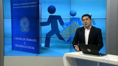 Ministério do Trabalho lança Escola do Trabalhador - Os cursos são gratuitos e podem ser feitos à distância.