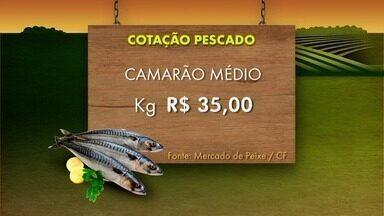 Confira a cotação dos produtos agrícolas e do pescado desta semana - Assista a seguir.