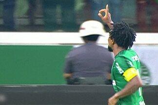 Palmeira e Botafogo marcam penúltima rodada do Brasileirão - Zé Roberto craque do Verdão fez sua despedida no jogo.