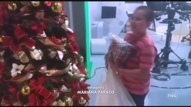 Telespectador de 10 anos visita NSC TV e entrega primeiro presente para 'Árvore do Bem' - Telespectador de 10 anos visita NSC TV e entrega primeiro presente para 'Árvore do Bem'