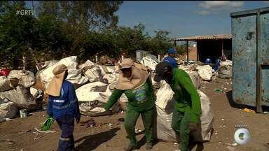 Funcionários de cooperativa de recicláveis trabalham expostos ao sol - Eles pedem a construção de um galpão.