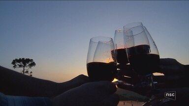 Prêmios coroam produção de vinhos e espumantes na Serra de SC - Prêmios coroam produção de vinhos e espumantes na Serra de SC