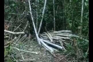 Polícia Federal deflagra operação para investigar grupo que vendia terras públicas - Investigados estariam vendendo lotes de terras públicas em Marabá.