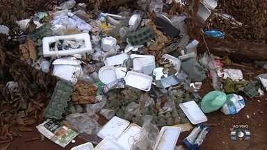 População joga lixo e entulho irregularmente em terreno no Jardim Curitiba, em Goiânia - Flagrantes mostram carros chegando com materiais que são abandonados.
