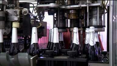 Produção de vinhos e espumantes aumenta em Petrolina - Vinícolas trabalham em ritmo acelerado para dar conta dos pedidos