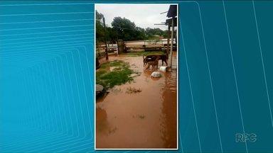 Chuvas causam estragos no feriado de Natal - Rio na PR-218 chegou a transbordar e interditou a rodovia. Propriedades rurais também ficaram alagadas.