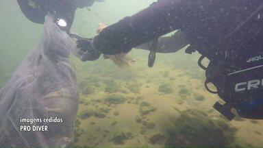Mergulhadores fazem inédito mutirão de limpeza no rio Paraná - Eles retiraram objetos como latas, peças de trator e até um guarda-sol do fundo do rio.