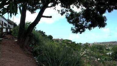 Vazamento de água próximo a árvore que ameaça cair assusta moradores do Mutange - Comunidade local cobram uma solução para o problema.