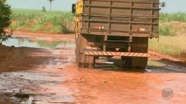 Motoristas reclamam de lama e buracos na Estrada do Brejinho em Barretos, SP - Prefeitura diz que equipe avaliará as condições dos 17 quilômetros da via.