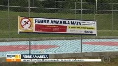 Febre amarela deixa dois mortos e jovem em coma na Grande São Paulo - Duas pessoas morreram por febre amarela na Grande São Paulo e uma jovem está internado em estado grave no Hospital das Clínicas. Segundo a Secretaria de Saúde do estado, todos foram infectados em Mairiporã.