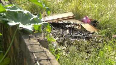 Telespectador da RPC reclama de terreno com mato e lixo em Foz do Iguaçu - Ele procurou a RPC depois que o Paraná TV mostrou vários terrenos na mesma situação na sexta-feira (6).