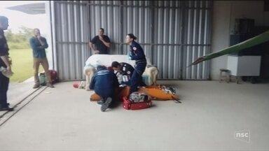 Bombeiros resgatam vítima de queda de ultraleve em Itapema - Bombeiros resgatam vítima de queda de ultraleve em Itapema