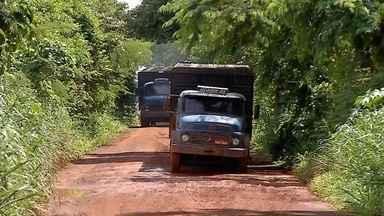 Pecuaristas reclamam de condições de estradas em Rondonópolis - Em alguns trechos da MT-383 é preciso que tratores puxem carros e caminhões dos atoleiros