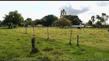 Censo de moradores do campo conhece comunidades quilombolas em Goiás - Equipe visita propriedades rurais para levantamento anual.