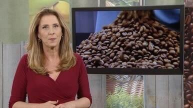 Previsão é de que a safra de café este ano seja 40% maior que em 2017, diz Cohab - Safra deve ficar entre 11milhões e 600 mil sacas e 13 milhões e 300 mil de sacas de café.