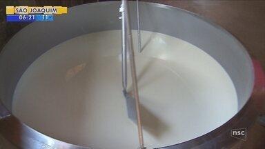 Chuva afeta produção de leite no Oeste de SC - Chuva afeta produção de leite no Oeste de SC