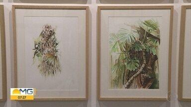 Árvores do Parque Municipal viram tema de exposição em Belo Horizonte - Mostra é do artista Wendell Leal, pós-graduado em artes plásticas.