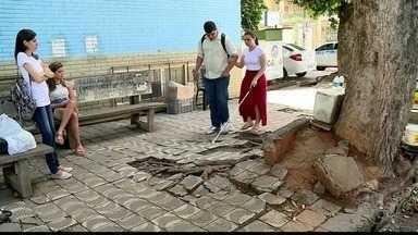 Moradores de Colatina, ES, reclamam do descaso com as calçadas da cidade - Prefeitura disse que a questão das calçadas está na Justiça.