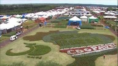 Feira no Paraná deve movimentar R$ 1,5 bilhão - A Show Rural, em Cascavel, traz as novidades nas áreas de pecuária, agroindústria e maquinários.