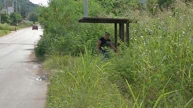 Moradores de bairro de Corumbá reclamam de mato alto em pontos de ônibus - É necessário que o poder público ou o proprietário do terreno resolvam o problema.