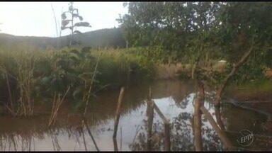 Moradores reclamam que acumulo de água parado gera mosquitos na MG-050, no Sul de MG - Moradores reclamam que acumulo de água parado gera mosquitos na MG-050, no Sul de MG