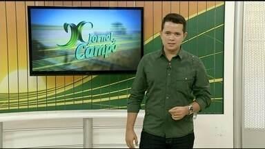 Confira o que será destaque do Jornal do Campo deste domingo (25) - Confira o que será destaque do Jornal do Campo deste domingo (25)