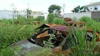 Carros apreendidos acumulam lixo e água parada em terreno baldio de Gurupi - Carros apreendidos acumulam lixo e água parada em terreno baldio de Gurupi