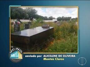 VC no MG: Moradora de Montes Claros reclama de mato alto no cemitério - Moradores de outros bairros também enviaram denúncias.