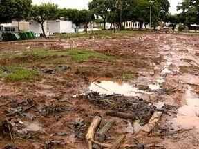 Moradores questionam corte de árvores em praça em Tupi Paulista - Prefeitura informou que tem autorizações ambientais para adotar a medida.
