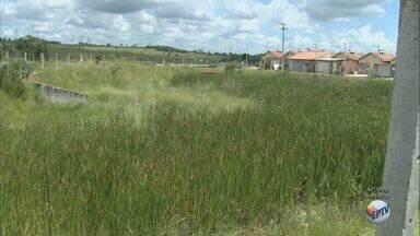 Moradores de São Carlos, SP, reclamam de reservatório de água no bairro Planalto Verde - Área virou um grande piscinão verde por causa do acumulo de água.