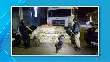 Polícia apreende 889 kg de cocaína em caminhão e 3 são presos na BR-262, em Água Clara - Caminhão tinha logomarca da Fibria, mas a PRF afirmou que não pertencia à empresa.