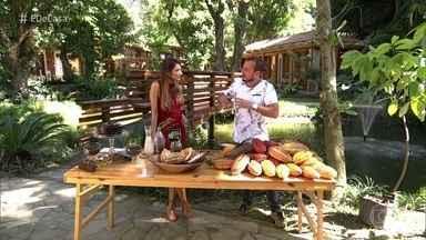 Murilo Soares revela curiosidades do Cacau e como plantar e cultivar em casa - Conheça o Antônio planta cacau há 15 anos no oeste da Bahia e a família baiana produz chocolate em casa