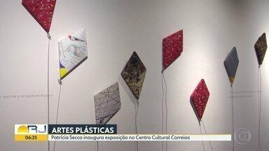 Patrícia Secco inaugura exposição no Centro Cultural Correios - Artista plástica trabalha com arame e materiais reciclados. A mostra fica em cartaz até 27 de maio.