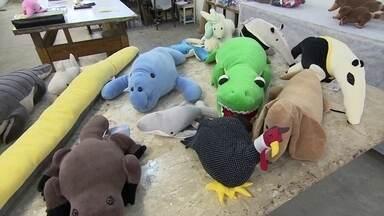Empresários apostam na confecção de brinquedos educativos - A empresa produz 4 mil peças por mês. A coleção própria tem 230 modelos e mais 50 feitos com exclusividade para outras empresas. Todos os brinquedos têm o selo do Inmetro.
