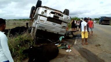 Caminhão bate em rebanho e tomba na rodovia AL-220, em Jaramataia - Carga de asfalto foi espalhada na via sobre animais no acostamento. Alguns dos bichos morreram e o motorista não se feriu.
