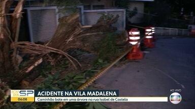 Caminhão bate em uma árvore na Zona Oeste de SP - Rua ficou interditada.