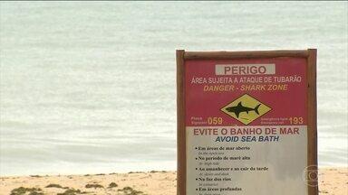 É grave o estado de saúde do banhista atacado por um tubarão em Pernambuco - Banhista não respeitou as placas que sinalizavam a presença do animal.